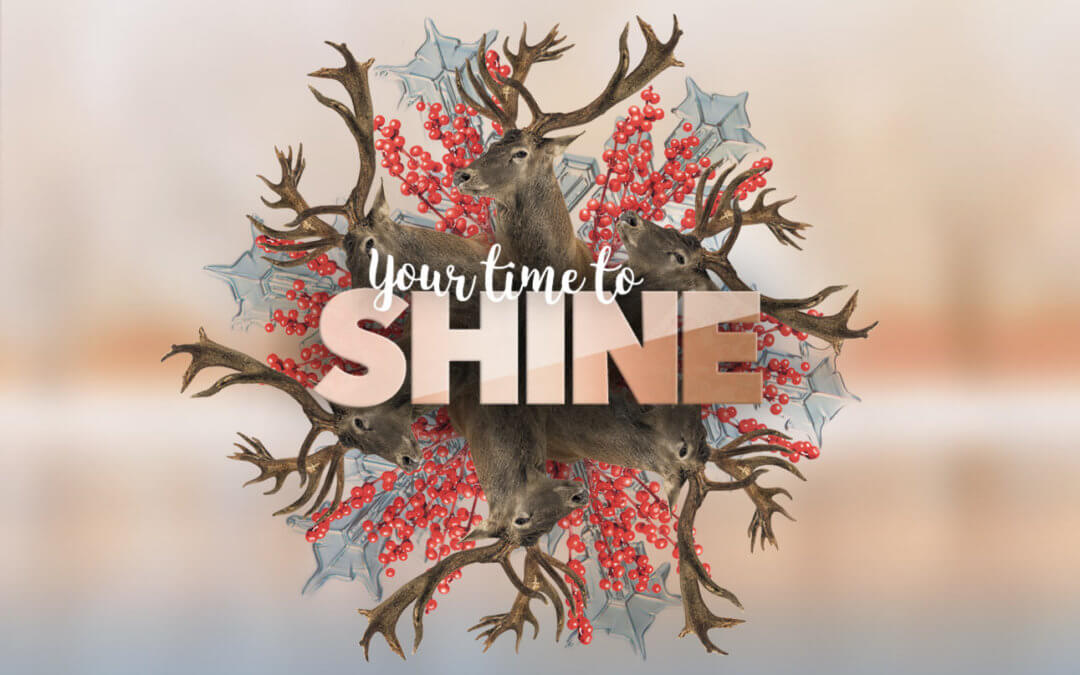 Your Time to Shine – Get Them to Notice