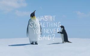Something You Never Said